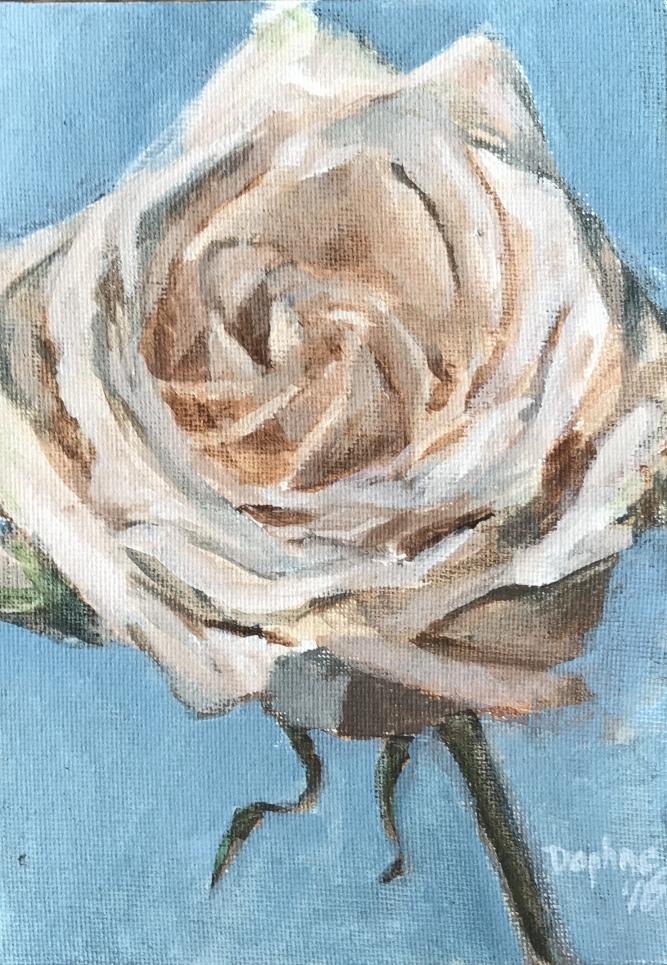Rose Demo 2016