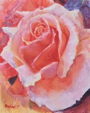 Rose Demo 2017
